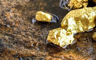 مواهب رشد قیمت طلا برای شرکت های معدنی