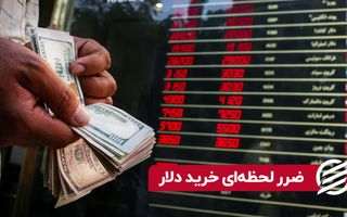 ضرر لحظه ای خرید دلار